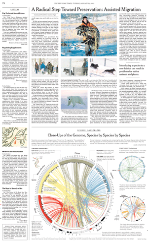 Circos in the New York Times illustrating how genomes are compared. (300 x 486)