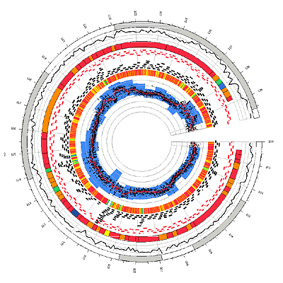 Circos - Circular Genome Data Visualization (400 x 400)