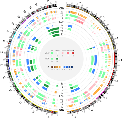 Circos - Circular Genome Data Visualization (400 x 389)
