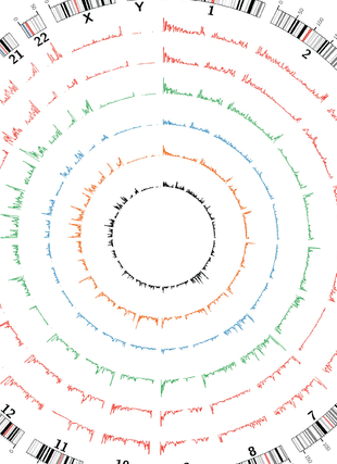 Circular genome visualization and data visualization with Circos: Genome-wide methylated CpG island profiles of melanoma cells reveal a melanoma coregulation network (310 x 427)