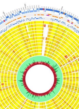 Circular genome visualization and data visualization with Circos: Genome Analysis of a Highly Virulent Serotype 1 Strain of Streptococcus pneumoniae from West Africa (310 x 427)