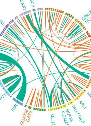 Circular genome visualization and data visualization with Circos: Genomic and epigenomic landscapes of adult de novo acute myeloid leukemia (310 x 427)