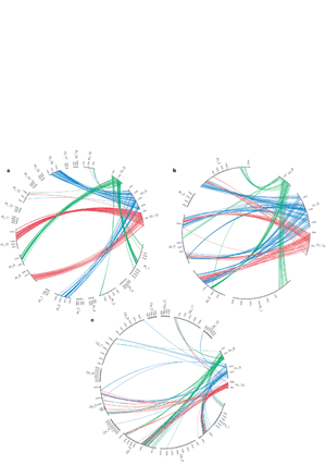 Circular genome visualization and data visualization with Circos: The grapevine genome sequence suggests ancestral hexaploidization in major angiosperm phyla (300 x 427)