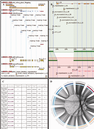 Circular genome visualization and data visualization with Circos: The Rice Genome Knowledgebase (RGKbase): an annotation database for rice comparative genomics and evolutionary biology (310 x 427)
