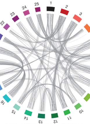 Circular genome visualization and data visualization with Circos: The zebrafish reference genome sequence and its relationship to the human genome (310 x 427)