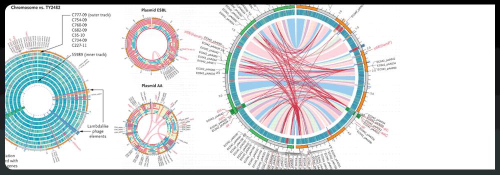 README // CIRCOS Circular Genome Data Visualization