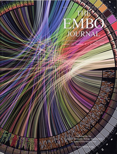 Circos image on EMBO Journal cover (394 x 517)