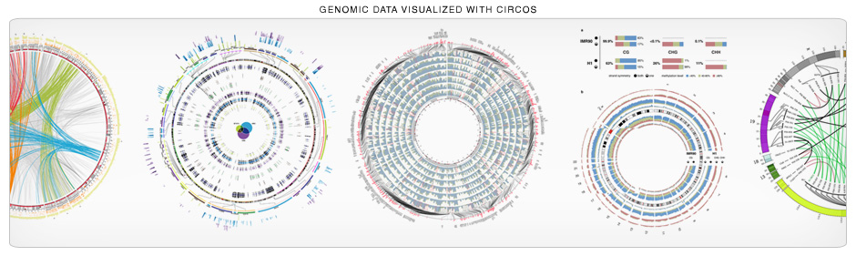 Introduction to circos features and uses circos circular circos is great for genomic data your genomic data 940 x 281 ccuart Image collections