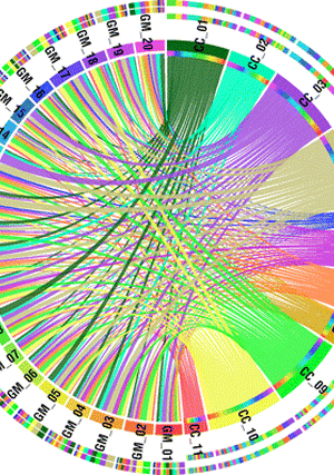 Circular genome visualization and data visualization with Circos: The first draft of the pigeonpea genome sequence (300 x 427)
