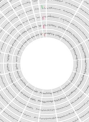 Circular genome visualization and data visualization with Circos: Noninvasive prenatal molecular karyotyping from maternal plasma (310 x 427)