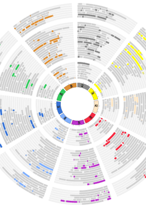 Circular genome visualization and data visualization with Circos: Whole genome comparisons of Fragaria, Prunus and Malus reveal different modes of evolution between Rosaceous subfamilies (300 x 427)