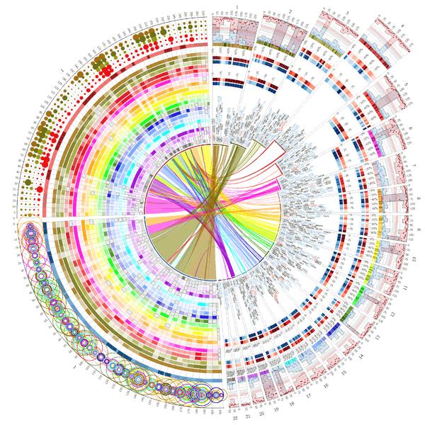 Circos Support Circos Circular Genome Data Visualization